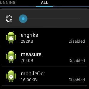 Engriks: что это за приложение